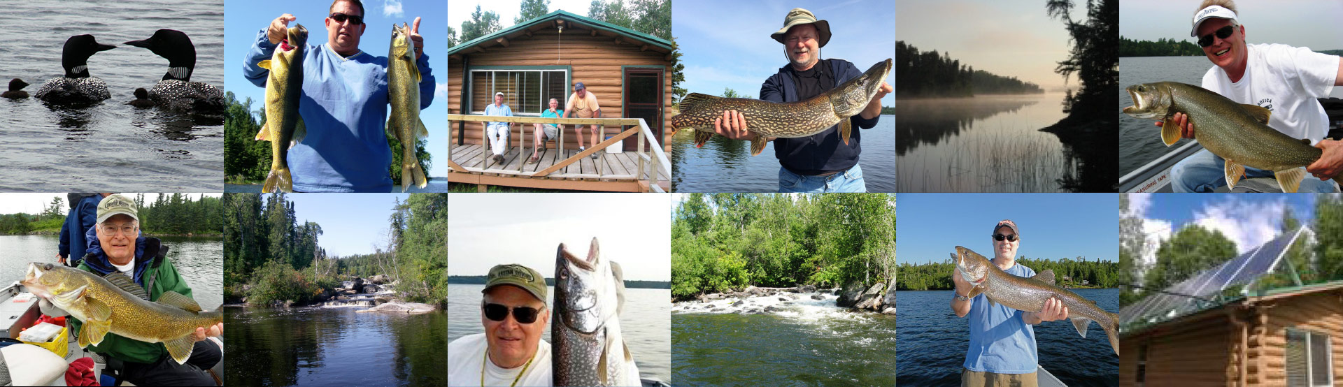 Collage of Fish, Guests, Cabins and More