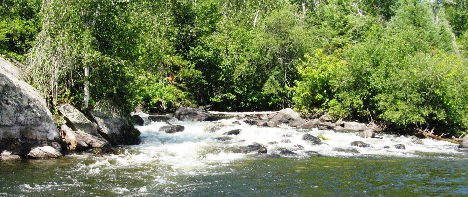 Chaval Falls Near Rowdy Lake