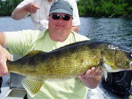 Big Walleye Catch